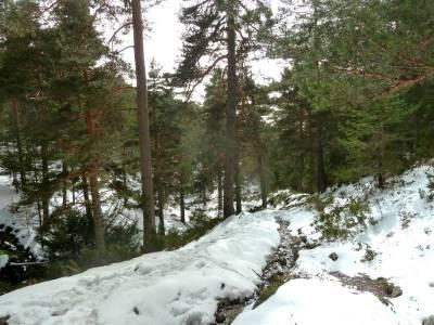 Siete Picos - Valle la Fuenfría; senderismo en madrid; mochila senderismo